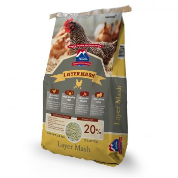 IFA Poultry Layer Mash 20%