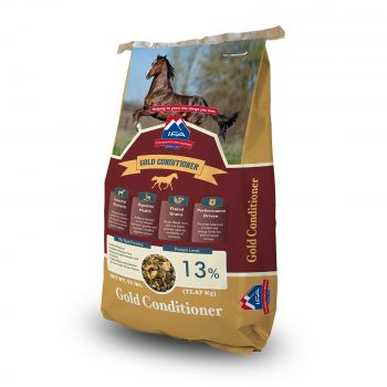 IFA Gold Horse Conditioner