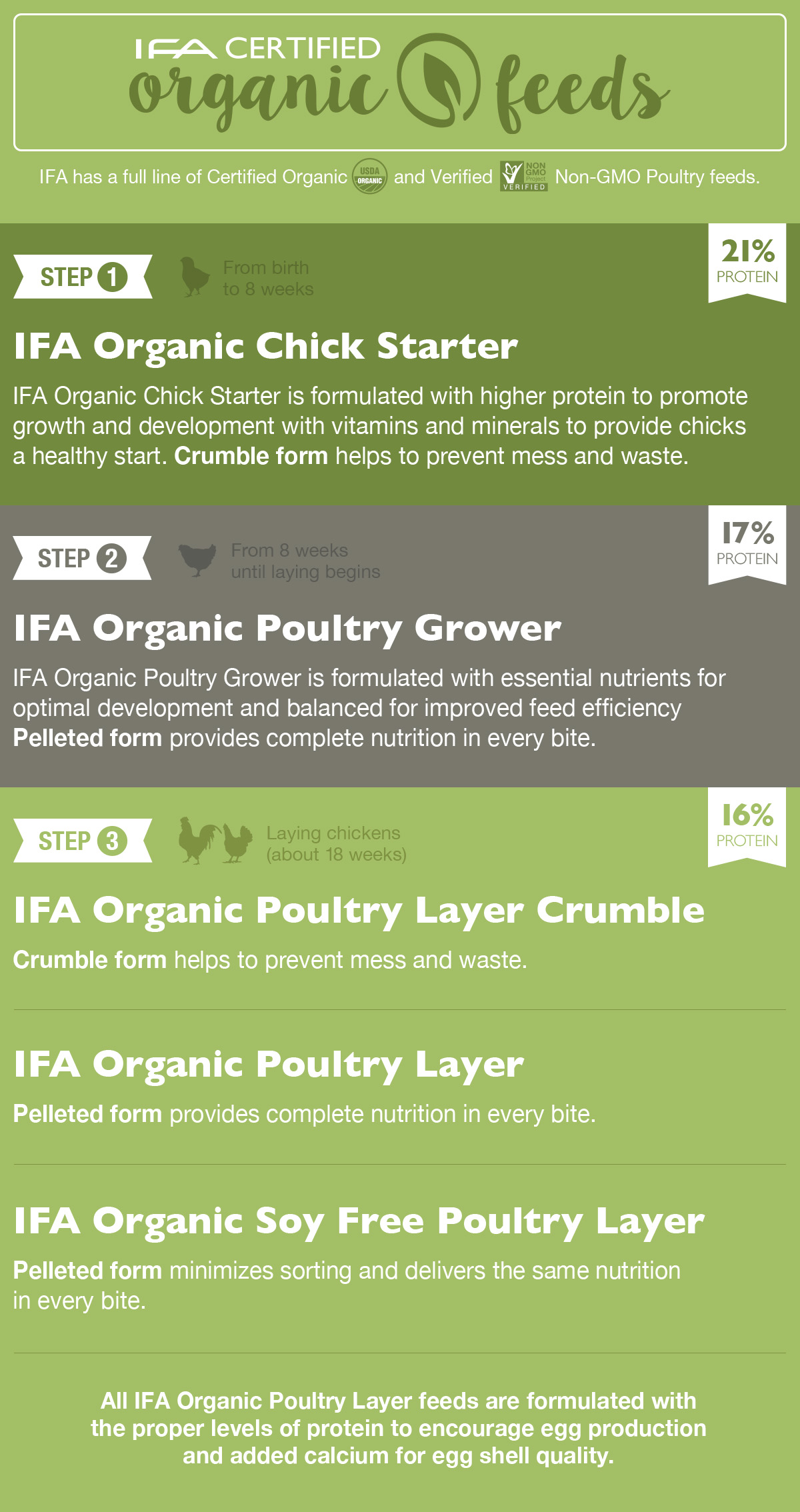 Better Feed For Your Backyard Chickens - IFA Country Stores