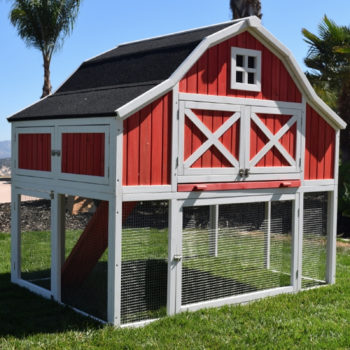 Omaha Red Barn Chicken Coop