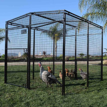 Universal Walk In Chicken Coop