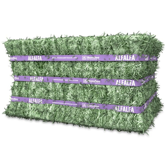 Alfalfa Hay Compressed Bale